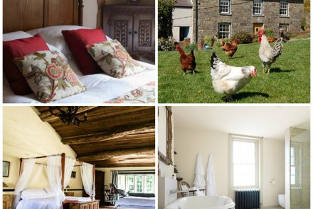 Alastair asks what makes a B&B special