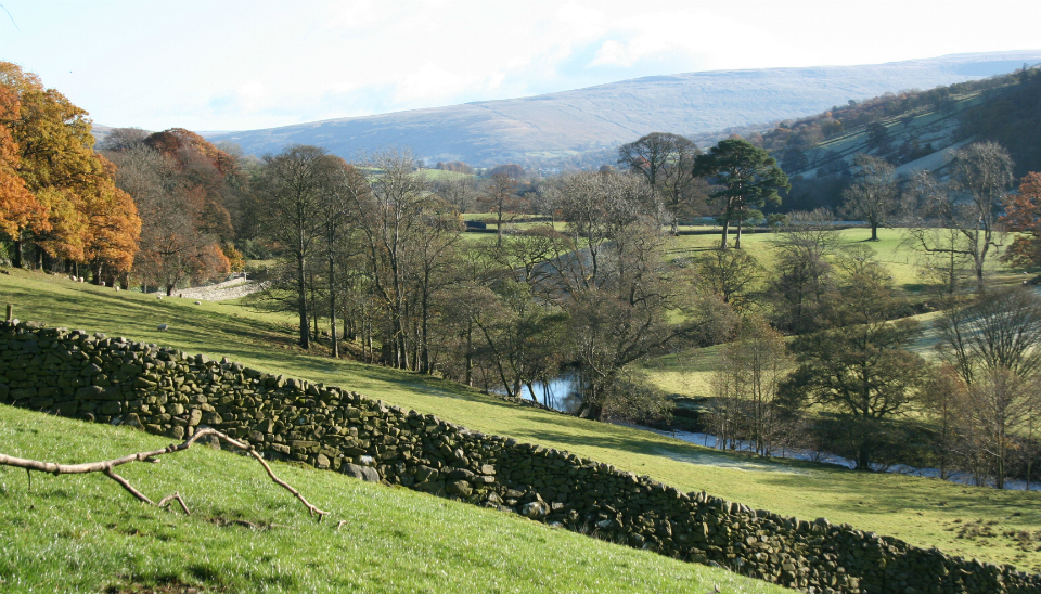 lower-dentdale