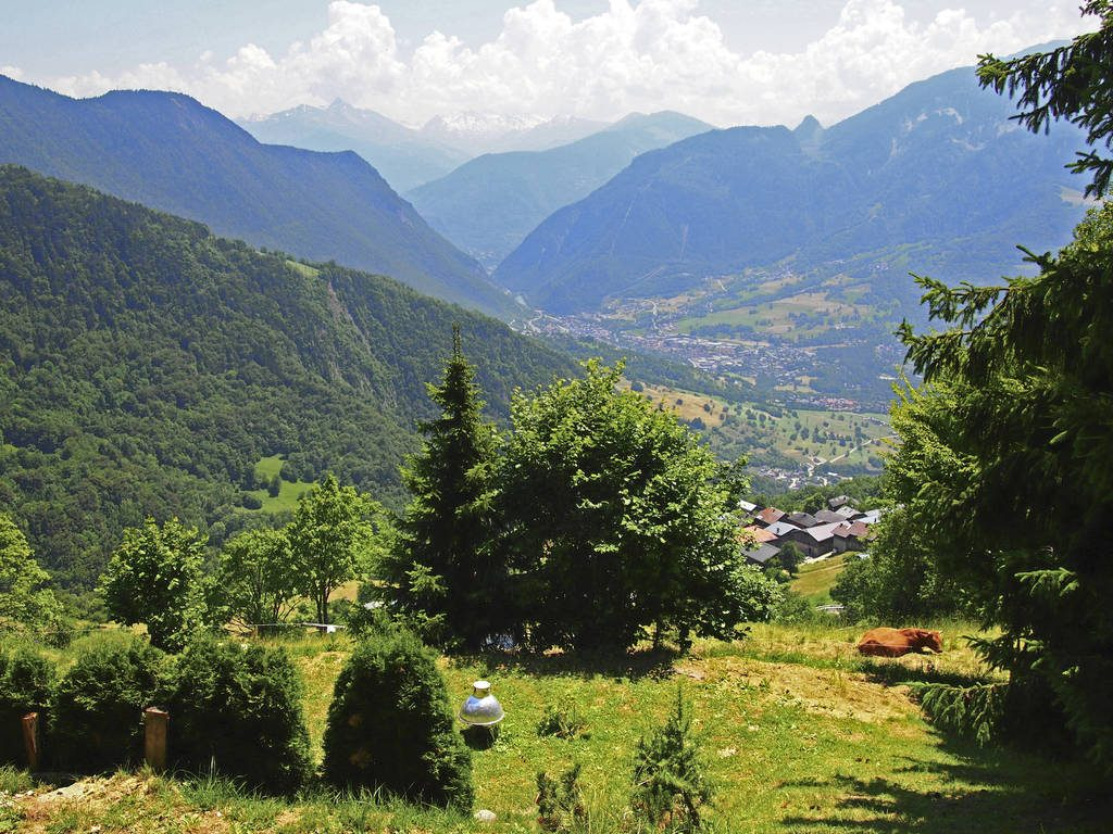 Chalet Savoie Faire - Cycling in France